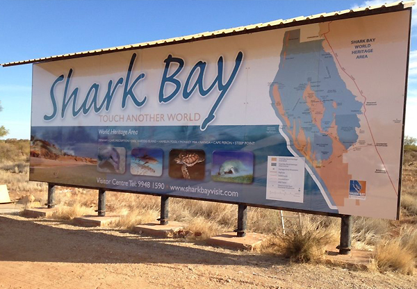 Shark Bay large format print